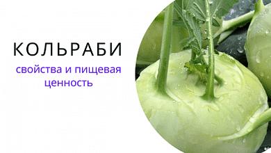 Кольраби - свойства и пищевая ценность 2