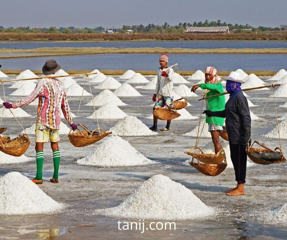 на фото - как добывается поваренная соль, морская соль
