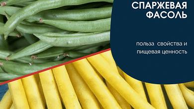 Спаржевая фасоль польза свойства и пищевая ценность