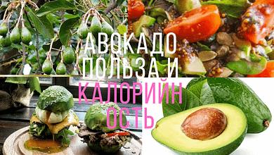 Авокадо польза и калорийность