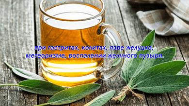 Польза шалфейного чая