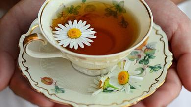 чай от головной боли, лечение головных болей чаем, ромашковый чай, мятный, из коры ивы, пижмы, кофеин и головная боль