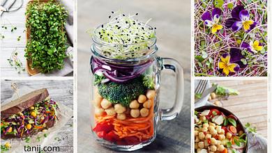 миурозелень польза микрогрин, как приготовить, кушать
