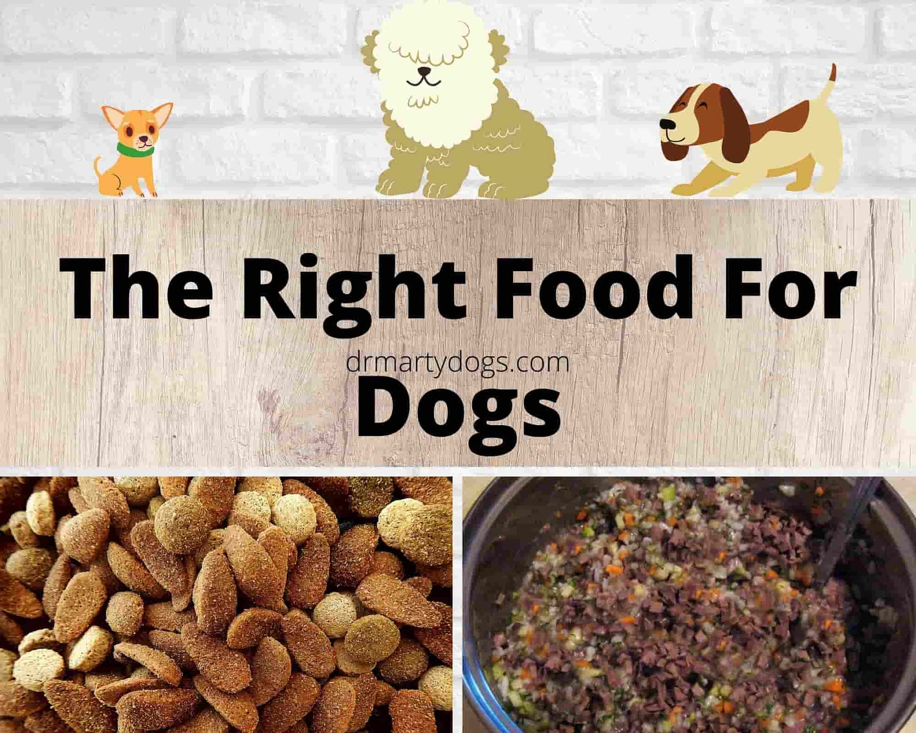 food for dogs of small breeds and food for dogs of large breeds