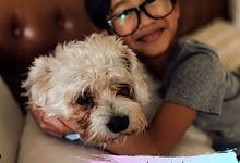 Photo of Can your pet get coronavirus?