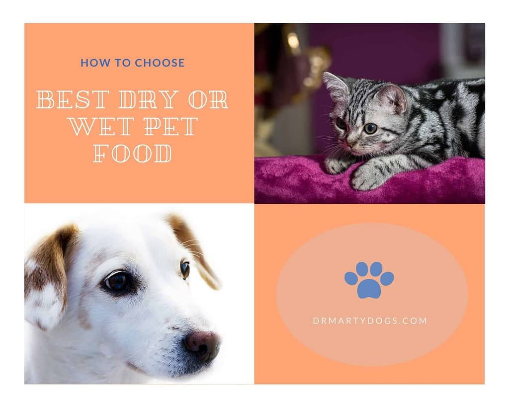 how to choose best commercial pet food